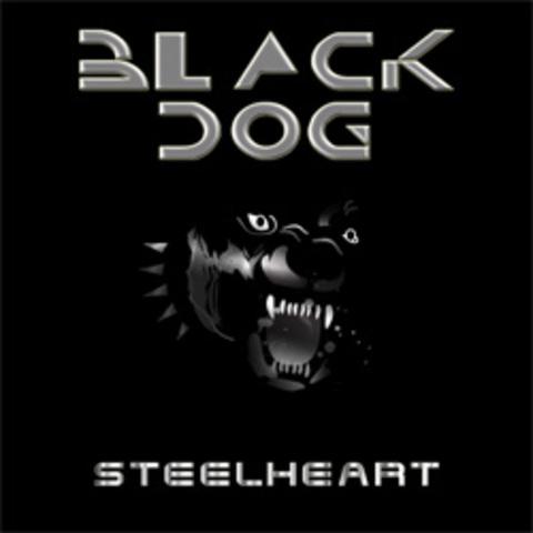 """Single """"Black Dog"""""""
