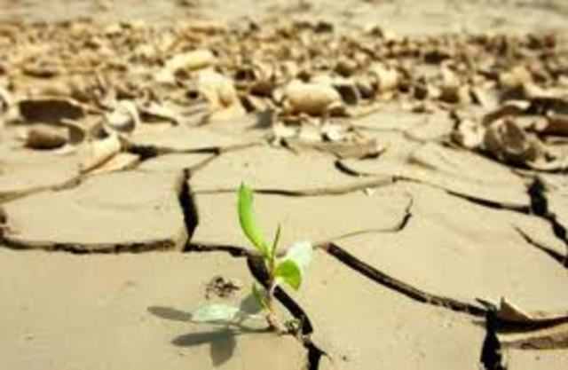 Primera conferencia del cambio climatico