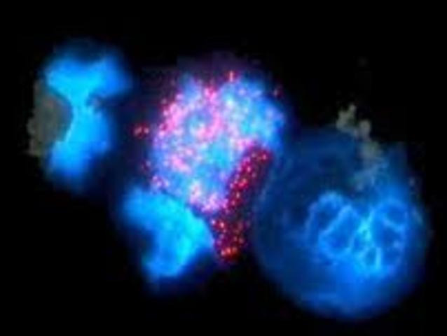 1911-1912: Se revela la estructura atómica de cristales