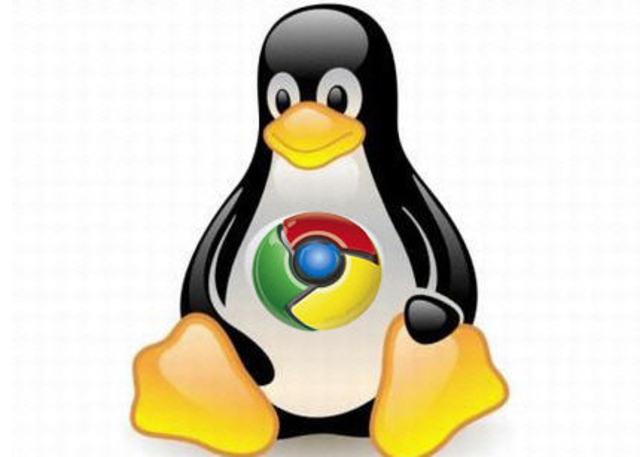 Versión 28, Google chrome para Linux