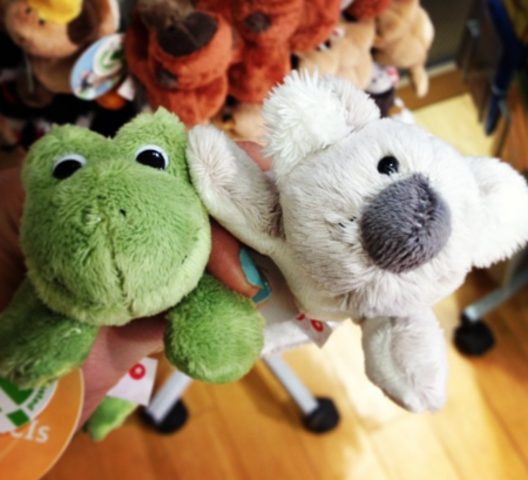 The frog and the koala.
