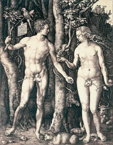 The Fall of Man by Albrecht Durer