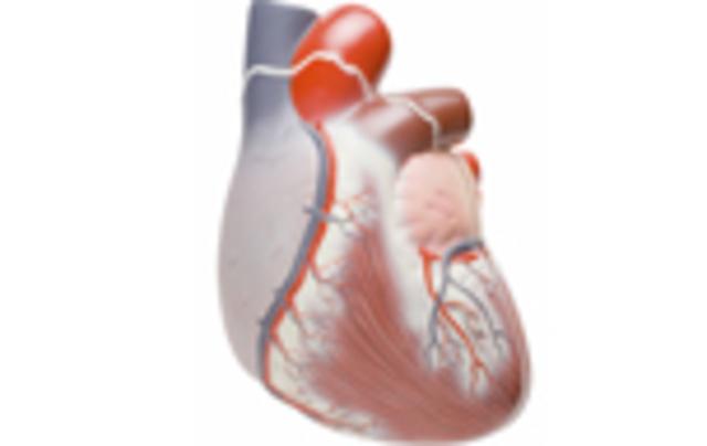 Válvulas cardíacas artificiales