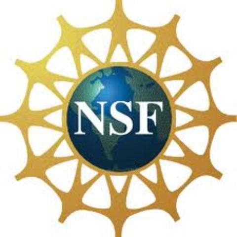 La Fundación Nacional de la Ciencia de EE.UU.