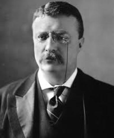 Golden Age of Conservation(Theodore Roosevelt) 1901-1909