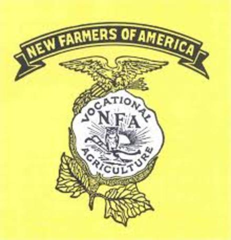 The NFA