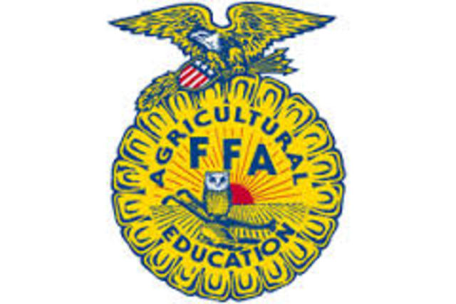 FFA a National Orginazation