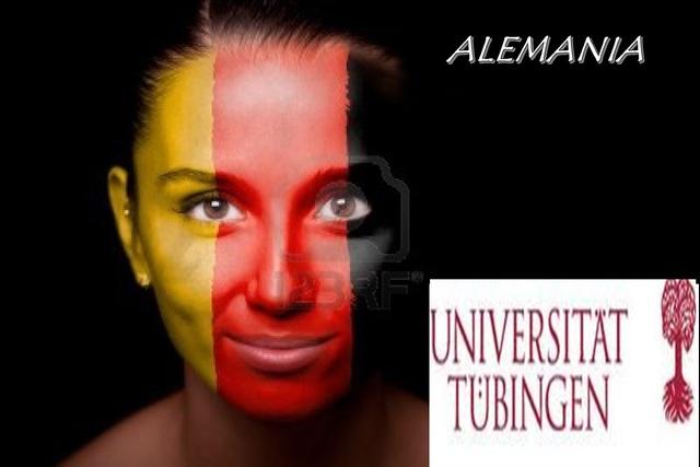 ALEMANIA. Deutsches Institut für Fernstudienforschung an der Universität Tübingen (DIFF)
