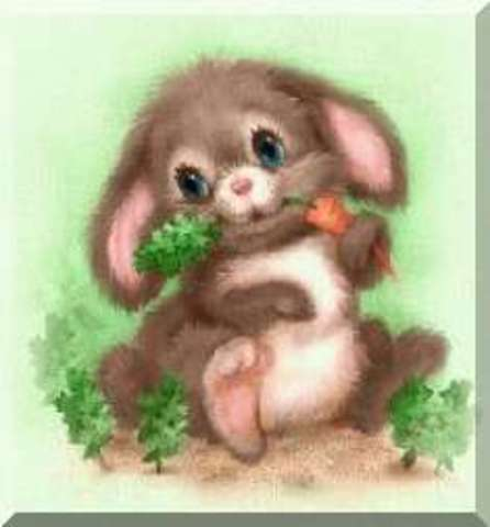 Bunny ate first carrot!
