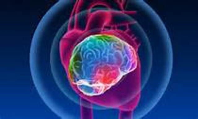 Aristotle - Heart is the basis of mental process