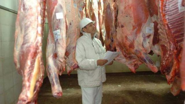 inspectores veterinarios