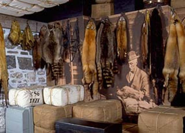 The Fur Trade Develops