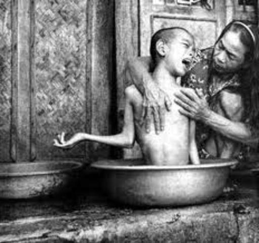Ecocide in Vietnam