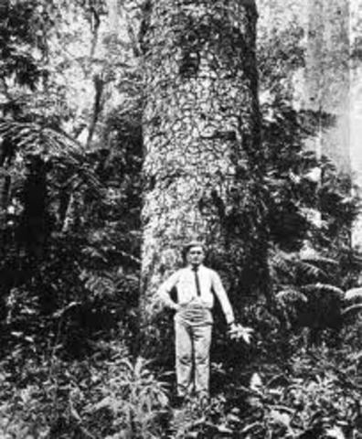 Founding of American Forestry Association