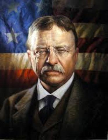 Goden Age of Conservation (Theodore Roosevelt)