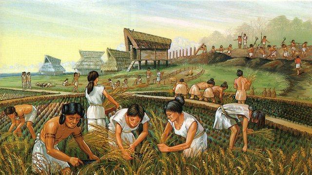 Agricultural Revolution (10,000 BC)