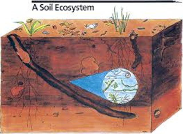 Soil Conservation Service Founded