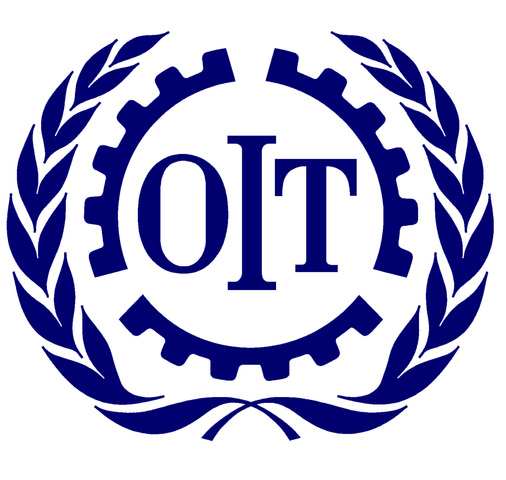 Organizacion mundial del trabajo