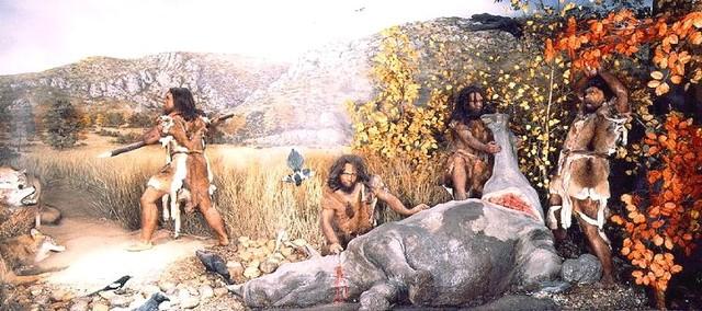 La préhistoire - 3 000 000 d'années