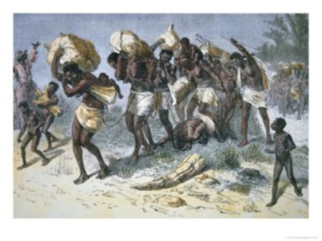 First Africans arrived in Jamestown