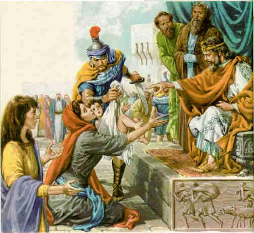 Solonom Builds the Kingdom