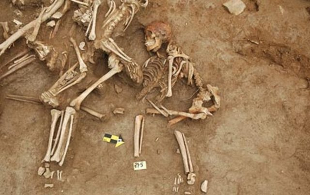 Mass Graves Discovered