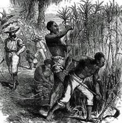 The Demand for Slavery