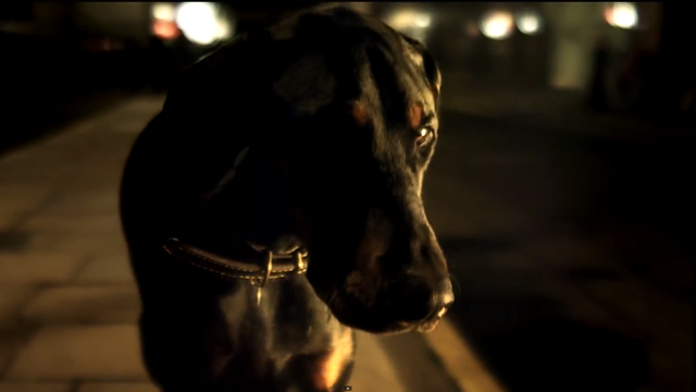 The dog acts as a prop - the colours of the dog go hand in hand with the colour scheme within the video (black and gold). The dog (part of Delilah's costume) adds a dominant layer to the artist. The lighting makes the dog look menacing and mysterious