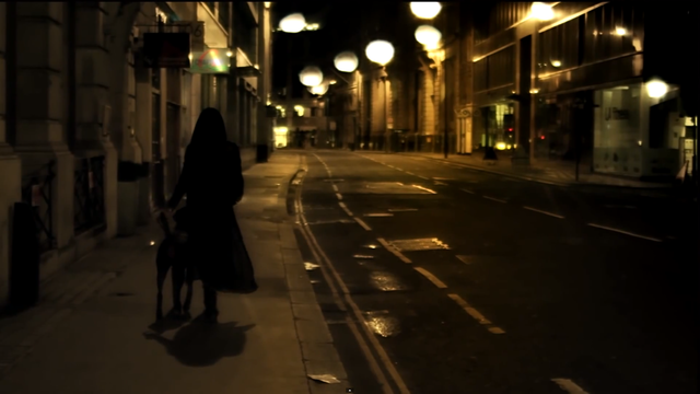 The final shot of the video (a wide shot) makes the city scape setting clear - we see the dog with the artist as well as the full costum. which has remained the same through the entire video.