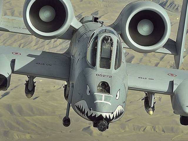 A-10 Thunderbolt(2)