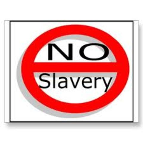 Georgia Prohibiting Slavery