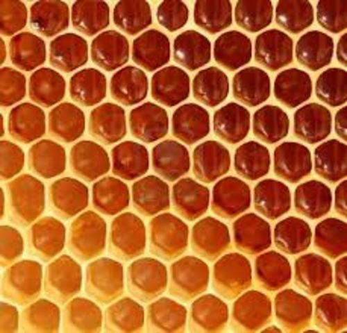 Versión 3.1 Honeycomb