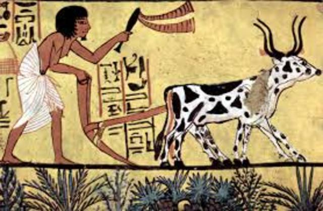 Agricultural Revolution (roughly 10.000 years ago)