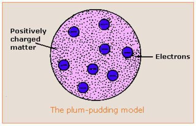 Thomson's Plum Pudding