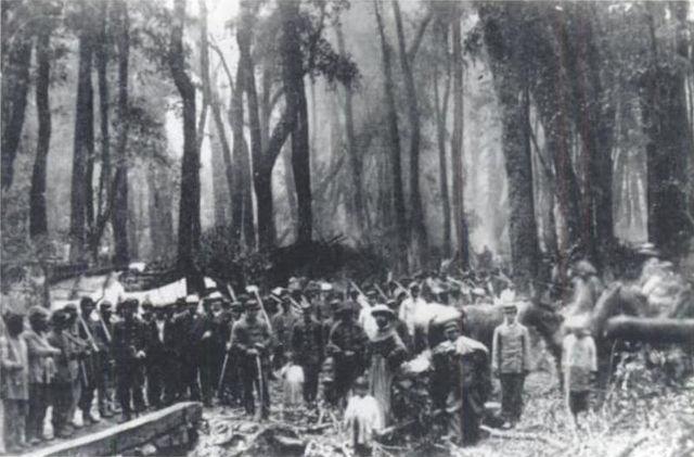 Ocupacion de la araucania .