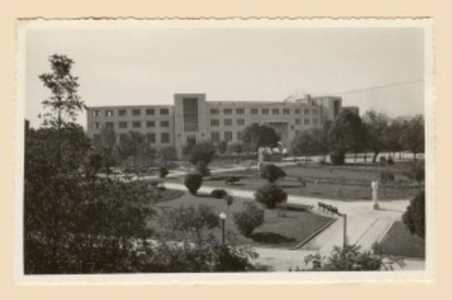 se creó la Universidad de Concepción