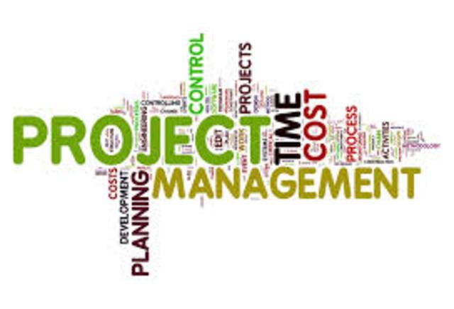 Diplomado en project management