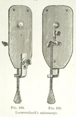 (Microscope) Van Leeuwenhoek invented his microscope