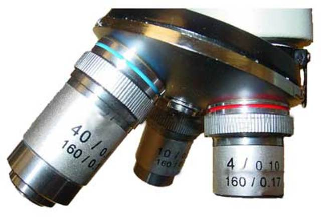 (Microscope) Lenses for microscopes became more efficient