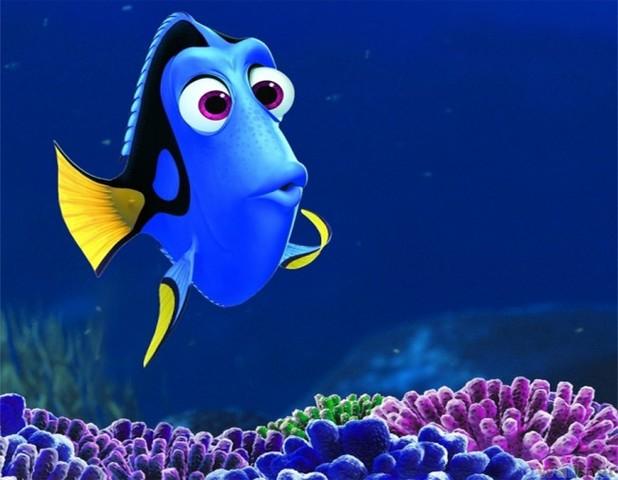 Estreia o filme Procurando o Nemo