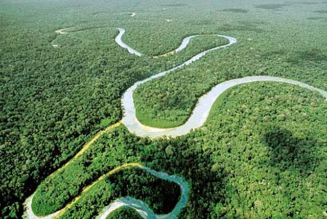 Turismo de selva