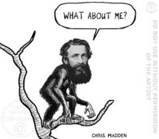 The Naturalists - Charles Darwin (1809 - 1882) & Alfred Wallace (1823 - 1913)