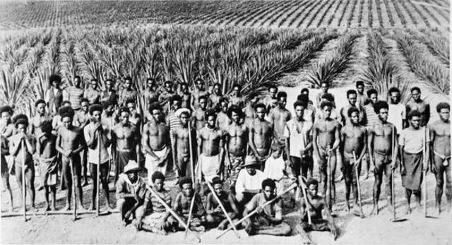 Kanaka's - Pacific Islanders