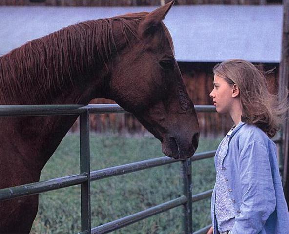 "Nicholas Evan - ""The Horse Whisperer"""