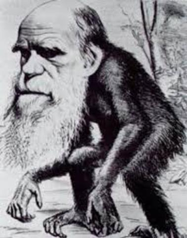 objetivo evolucion humana