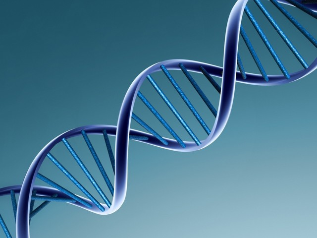 Watson and Crick discover the structure of DNA