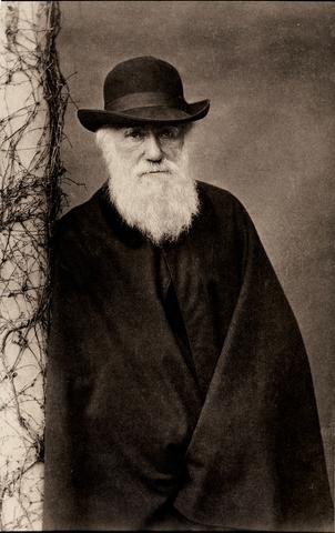 ultimos años de Darwin