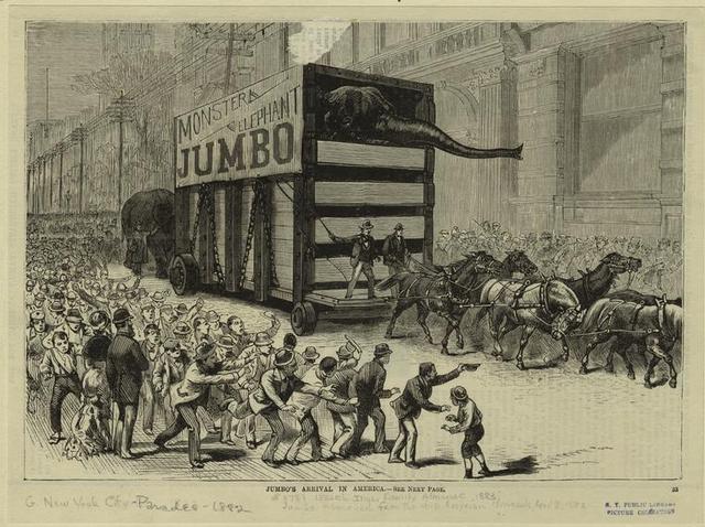 Jumbo arrives in New York
