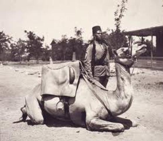 Turco-Egyptian Rule of Sudan