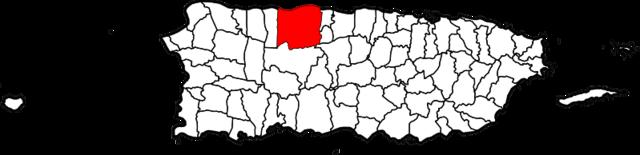 Zona geografica y topografia